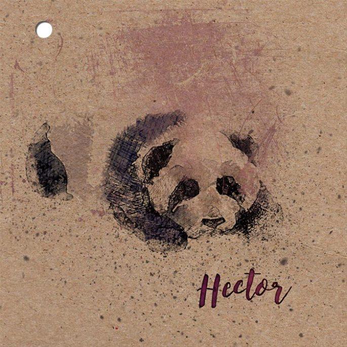 couverture-faire-part-naissance-kraft-panda