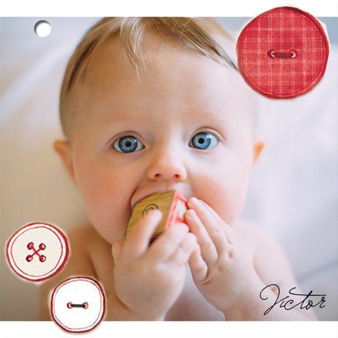 feuillet-photo-faire-part-naissance-ecologique-la-guerre-des-boutons