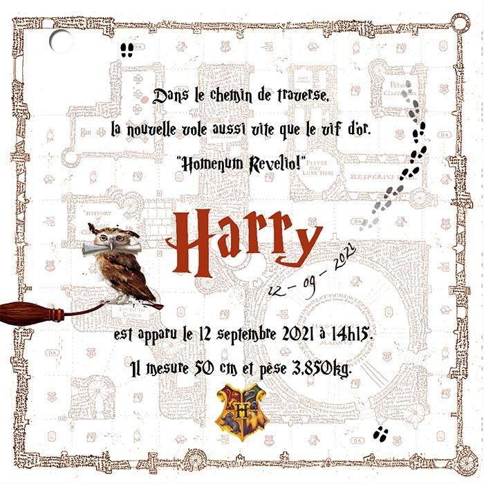 Faire Part De Naissance Harry Potter Paperandkraft