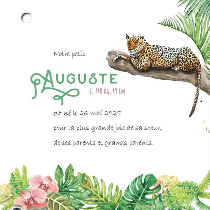 feuillet-texte-faire-part-naissance-ecoresponsable-jungle